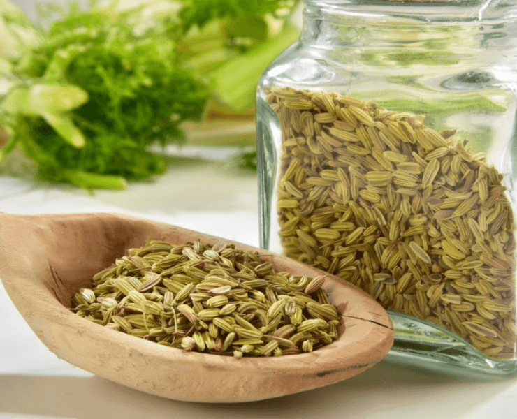 Fennel Seeds Water For Weight Loss