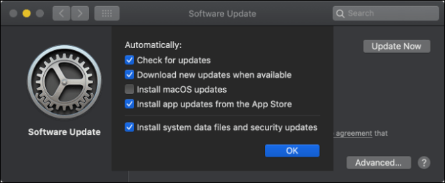 The macOS Software Updates panel.