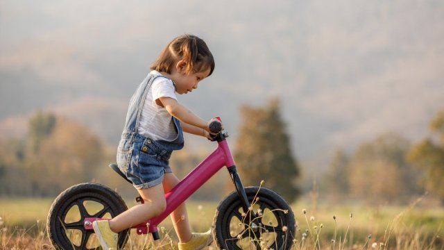 A toddler on a balance bike.