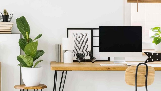 sunny home office with small desk and plants