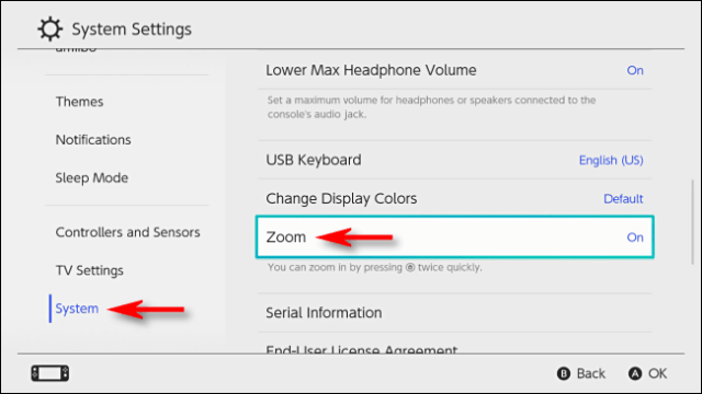 Enable zoom on system settings on Nintendo Switch