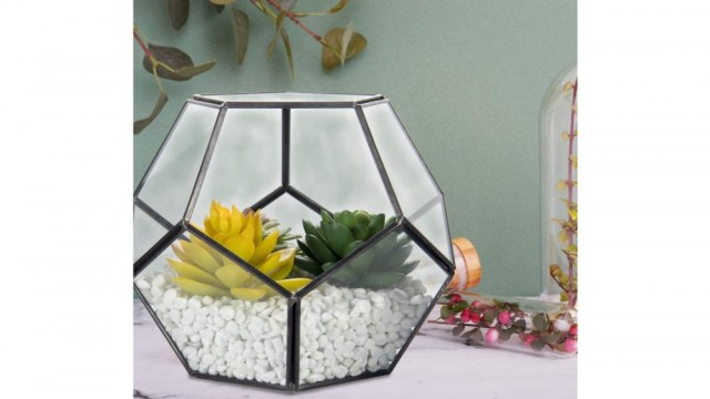 Geometric glass and metal terrarium with succulents and rocks sitting on a desk with other plants
