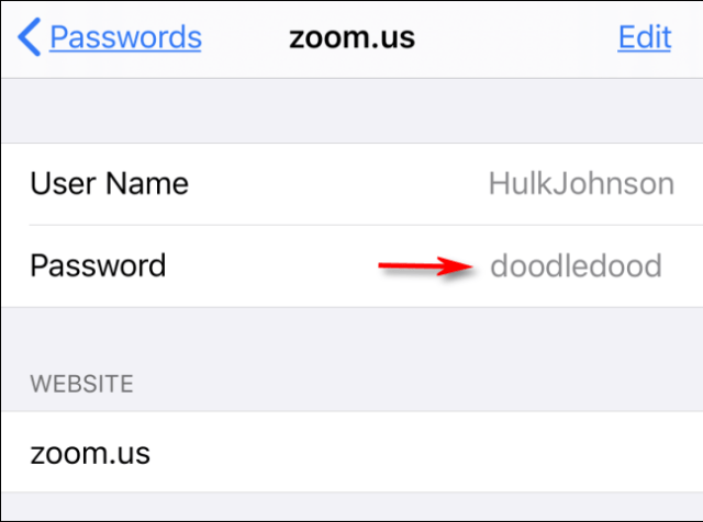 Your website password revealed in iPhone settings