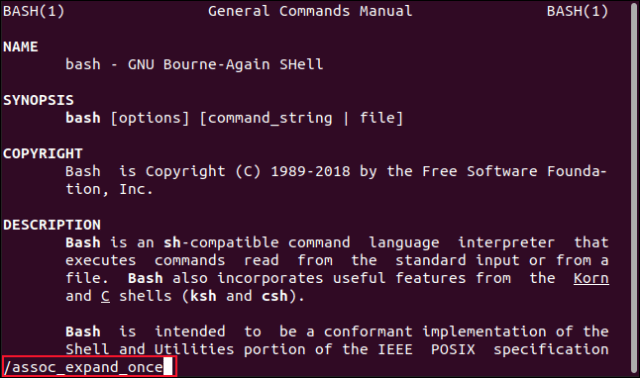 Bash section of the manual, with a search term entered at the command line in a terminal window.