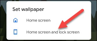 "Tap ""Home Screen"" or ""Home and Lock Screen."""