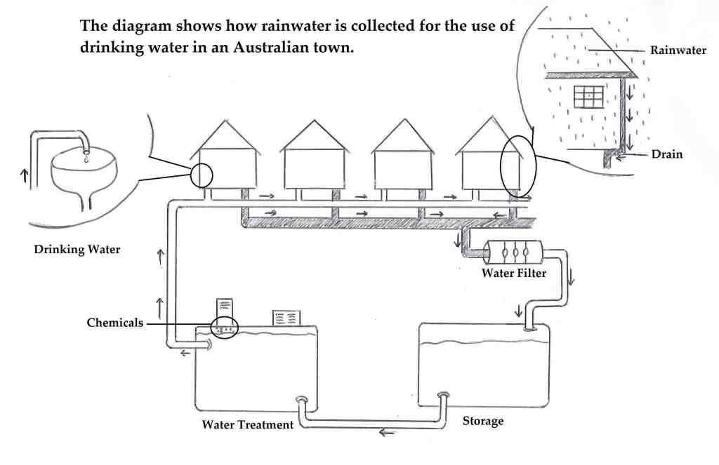 IELTS Writing Task 1 Sample Answer Essay: Rainwater Diagram/Process (Real Past IELTS Exam)