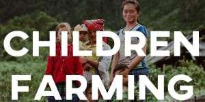 ielts essay children farming