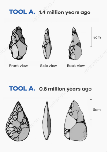 ielts essay prehistoric tools