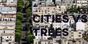 ielts essays cities and trees