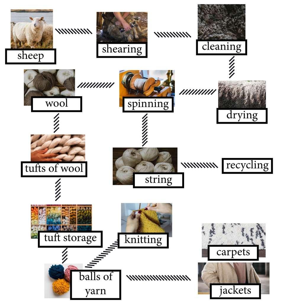 ielts essay wool