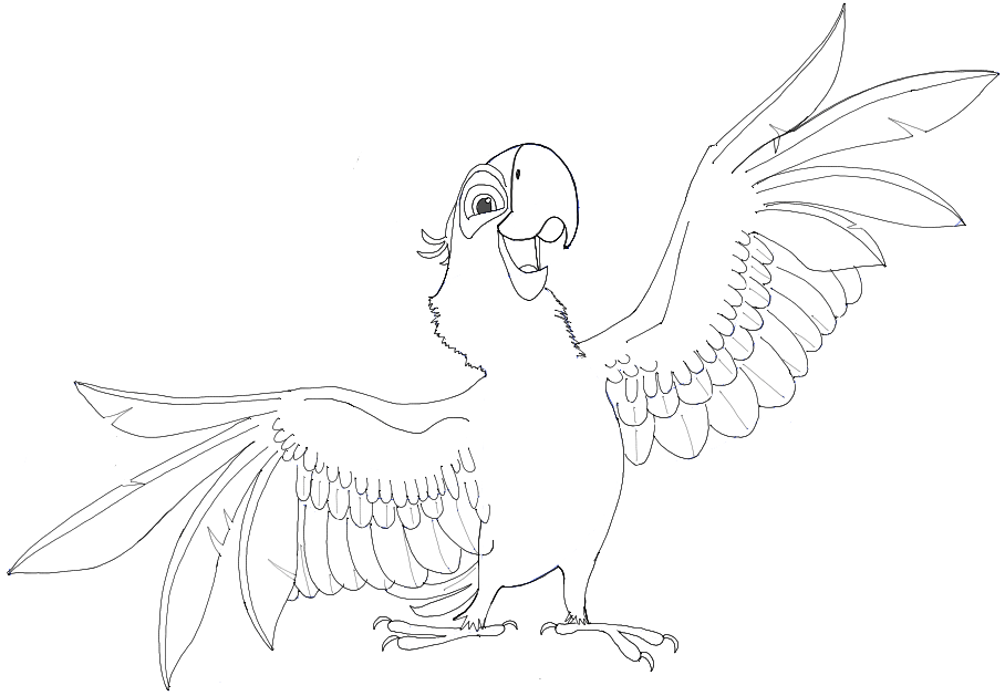 How to Draw Blu from Rio and Rio 2 in Simple Step by Step