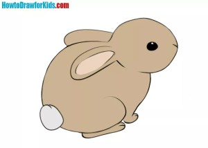 rabbit draw easy drawing rabbits drawings cartoon way coloring paintingvalley caused know howtodrawforkids