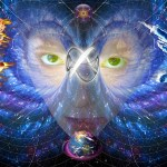 The Cosmic Reset And The First Quarter Of 2017 Energy Report