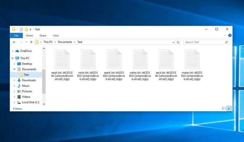 Ziggy Virus - encrypted .[artemis@cock.email].ziggy files