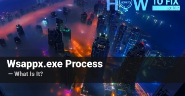 What is wappx.exe process?