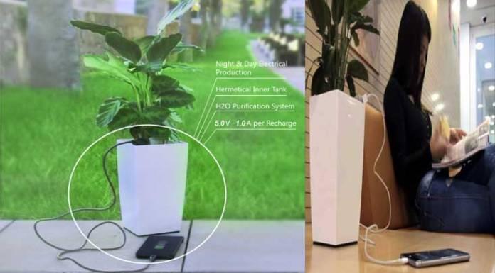 charge mobile with a plant