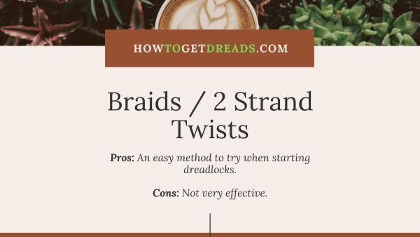 Braids Two Strand Twists Dreadlocks