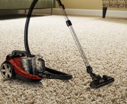 How To Get Rid Of Fleas In Carpet And Bed With 0 Dollar