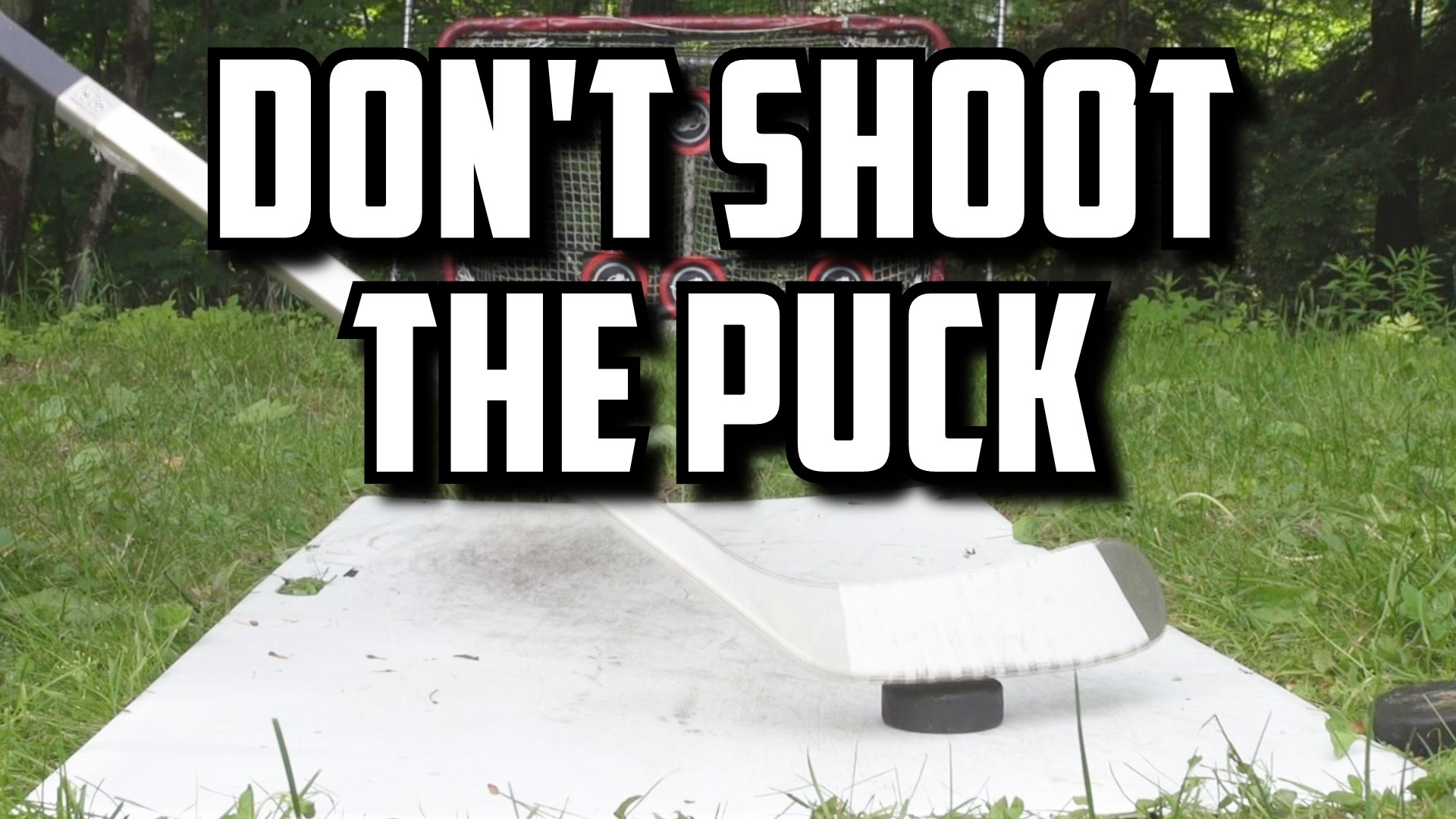 Don't Shoot the Puck!
