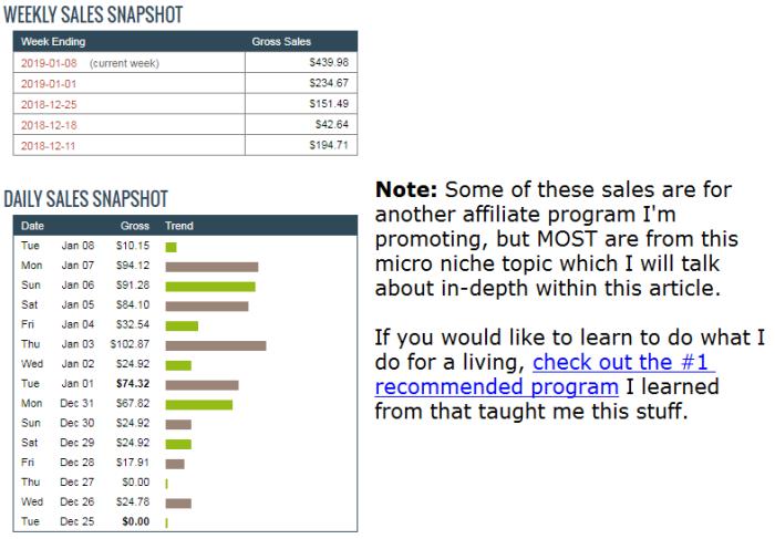 micro niche ideas results