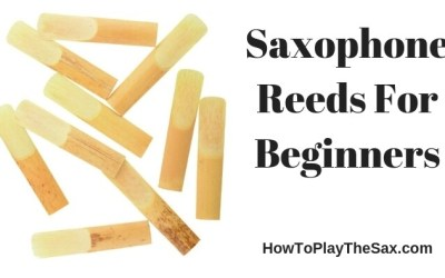 Saxophone Reeds For Beginners