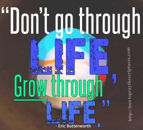 dont go through life, grow through life