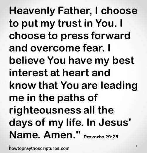 i choose to put my trust proverbs 29-15