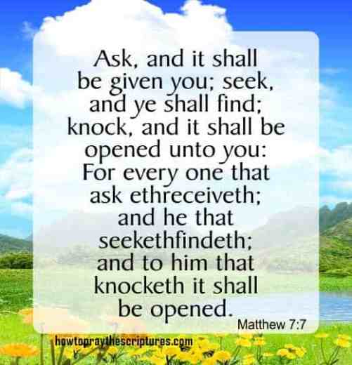 Ask And It Shall Be Given You Seek And Ye Shall Find