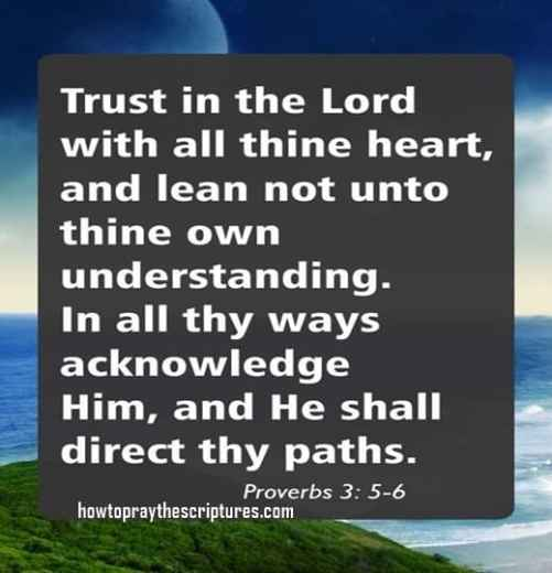 Trust In The Lord With All Your Heart- Proverbs 3-5