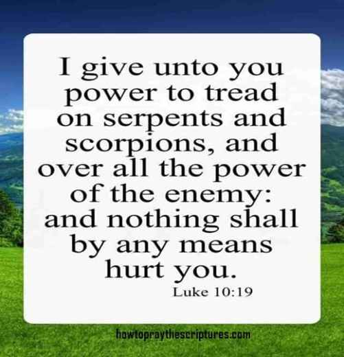 I Give Unto You Power To Tread On Serpents