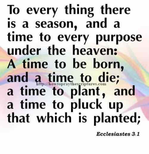 To Every Thing There Is A Season Ecclesiastes 3-1