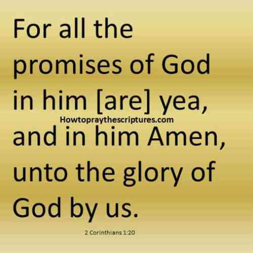About The Promises Of God