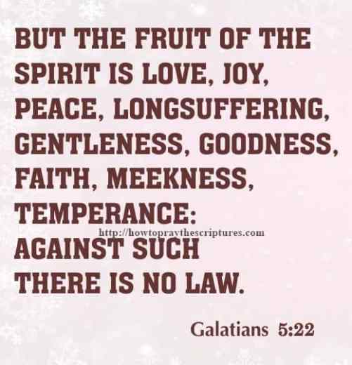 But The Fruit Of The Spirit Is Love Galatians 5-22