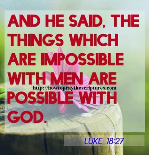 And He Said The Things Which Are Impossible Luke 18-27
