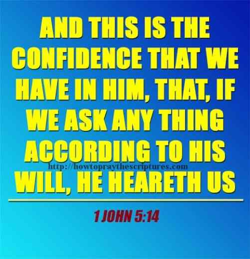 And This Is The Confidence That We Have 1 John 5-14