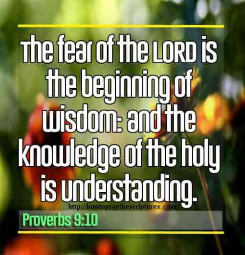 The Fear Of The LORD Is The Beginning Of Wisdom Proverbs 9-10