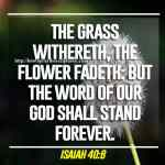 The Grass Withereth The Flower Fadeth Isaiah 40-8
