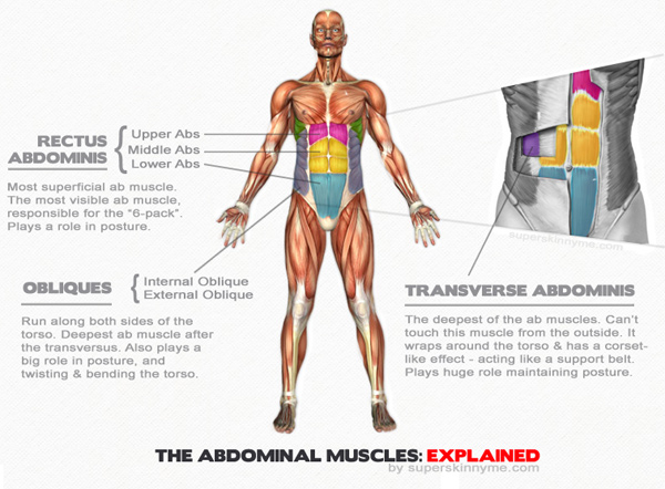 Abs Workout Routine - Abs image