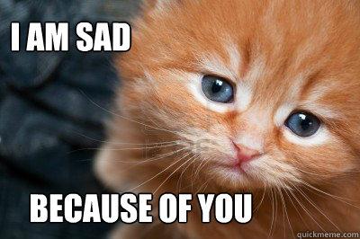 sad-cat-meme-09