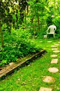 garden journal writing inspiration