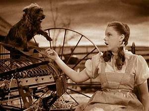 Dorothy in Kansas with Toto