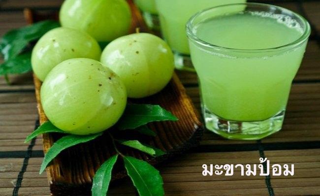 10 สมุนไพรไทยรักษาโรคกระเพาะ บรรเทาอาการปวดได้อย่างรวดเร็ว