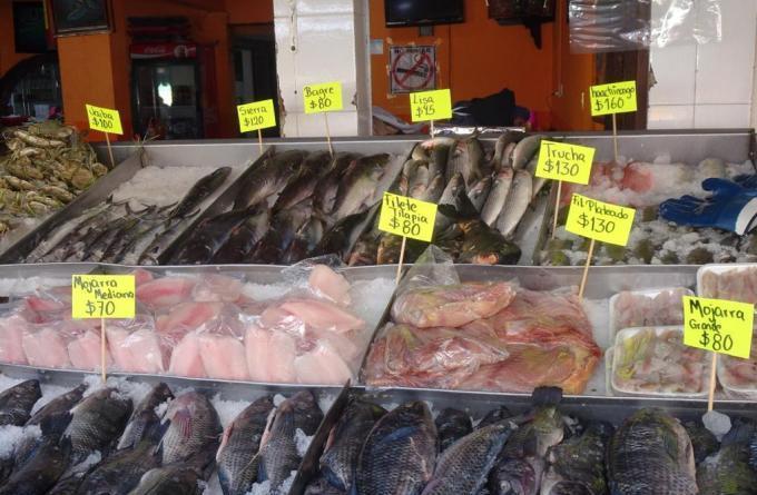 Comienza verificación de productos de mar por la cuaresma