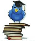 Pasos Importantes para Principiantes de Twitter