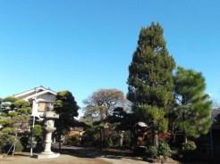 中道寺【庭園】