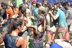 mud festival 2015-24