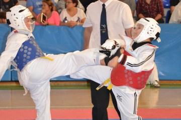 taekwondo2015-69