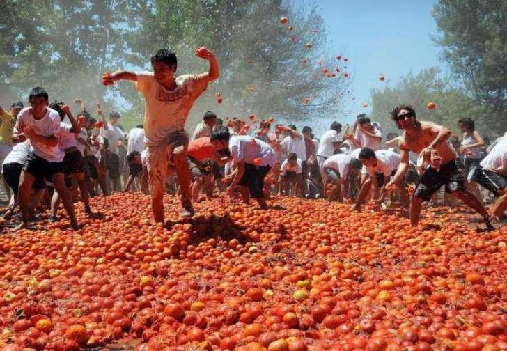 la tomatina chile