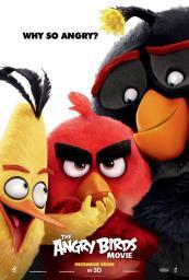 Angry_Birds_la_pel_cula-452808676-large