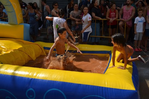 Mud Festival 2016-5
